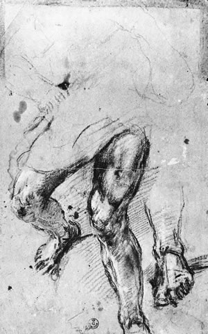 Titian, STUDIES OF LEGS