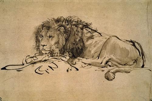 Rembrandt_lion-resting