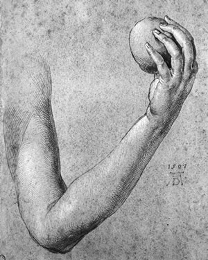Albrecht Durer, THE ARM OF EVE